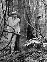 Hunter at tree stand, Mississippi Delta