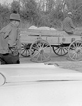 Car and wagon