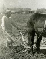Prisoner plowing