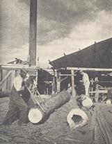 A Hardwood Sawmill