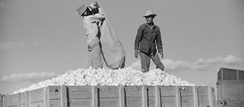 Detail: Mexican Seasonal Laborers